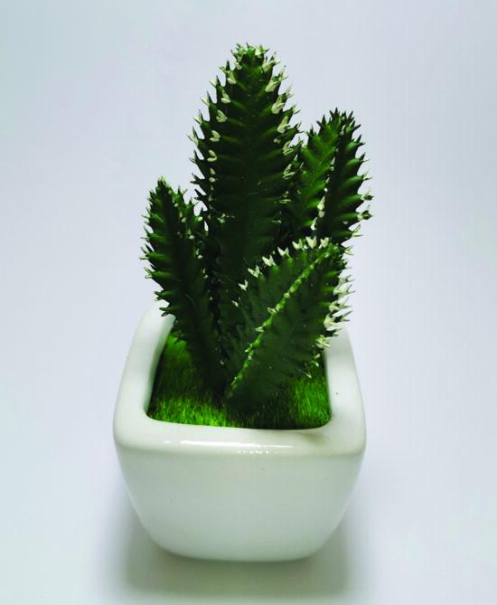 Artificial Cactus Succulents Plants With White Pot